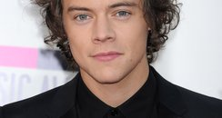 Harry Styles American Music Awards 2013 Red Carpe