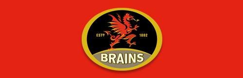 brains hero wide