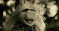 Miss Piggy Adele Cover
