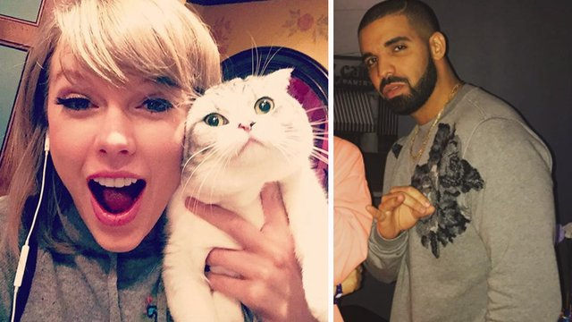 does taylor swift have a cat