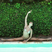 Image 2: Nicole Scherzinger practises the splits on holiday